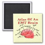 Atlas de un cerebro de EMT Imán Cuadrado