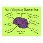 Atlas de un cerebro del terapeuta respiratorio postales