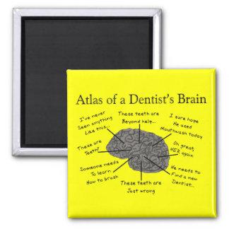 Atlas del cerebro de un dentista imán de frigorifico