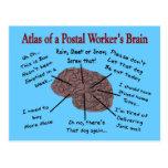 Atlas del cerebro de un empleado de correos postales