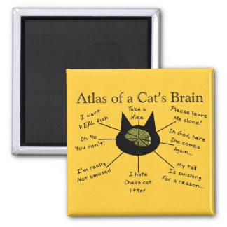 Atlas del cerebro de un gato imán cuadrado