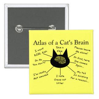 Atlas del cerebro de un gato pin cuadrado