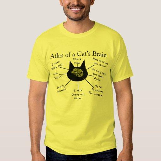 Atlas del cerebro de un gato playeras