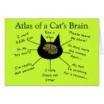 Atlas del cerebro de un gato tarjeta
