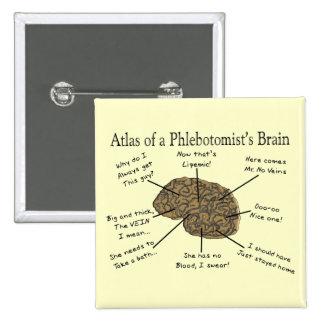 Atlas del cerebro de un Phlebotomist Pin Cuadrado