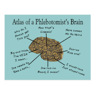 Atlas del cerebro de un Phlebotomist Tarjeta Postal