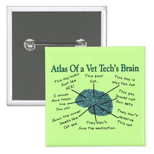Atlas del cerebro de una tecnología del veterinari pin