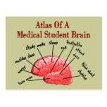 Atlas del cerebro del estudiante de medicina tarjetas postales