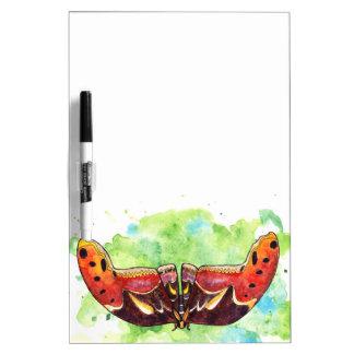 Atlas moth dry erase board