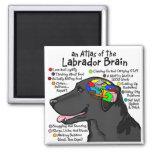 Atlas negro del cerebro de Labrador Imanes De Nevera