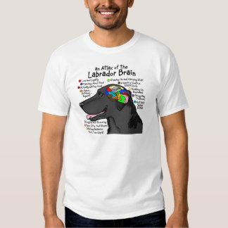 Atlas negro del cerebro de Labrador Playera