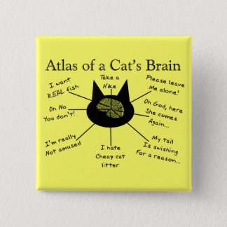 Atlas Of a Cat's Brain Pinback Button