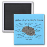 Atlas of a Dentist's Brain Magnets