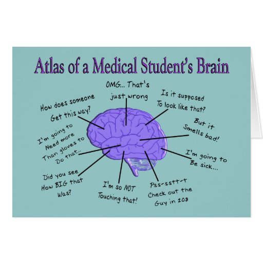 Atlas of a Medical Student's Brain #2 Greeting Cards