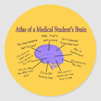 Atlas of a Medical Student's Brain #2 Classic Round Sticker