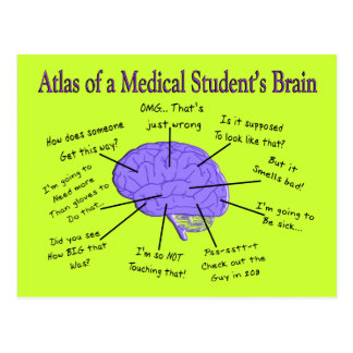Atlas of a Medical Student's Brain #2 Postcard