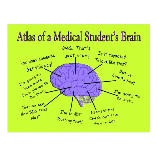 Atlas of a Medical Student's Brain #2 Postcard