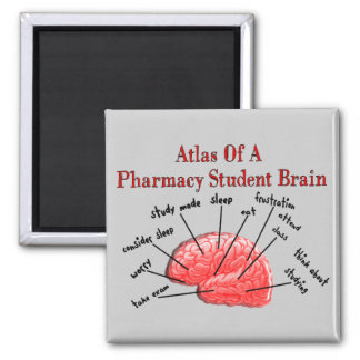 Atlas of a Pharmacy Student Brain 2 Inch Square Magnet