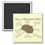 Atlas of a Phlebotomist's Brain 2 Inch Square Magnet