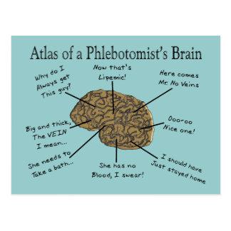 Atlas of a Phlebotomist's Brain Postcard