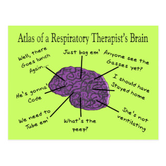 Atlas of a Respiratory Therapist s Brain Post Cards