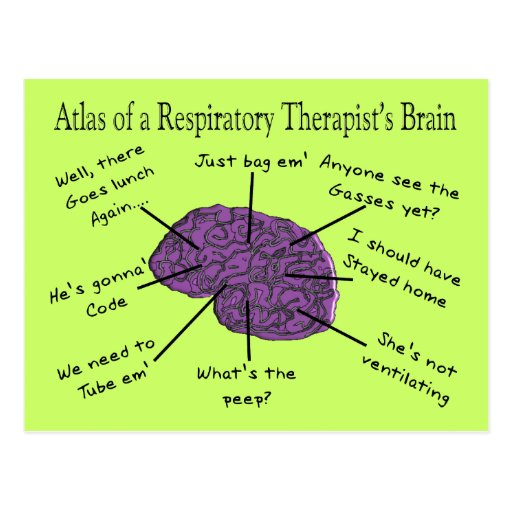 Respiratory Therapy Resumes Examples | BestSellerBookDB