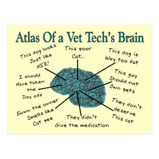 Atlas of a Vet Tech's Brain Postcard