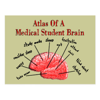 Atlas of Medical Student Brain Postcards