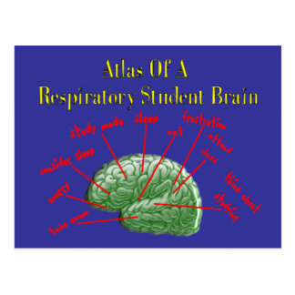 Atlas of Respiratory Student Brain Gifts Postcard