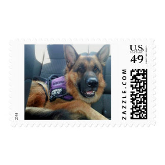 Atlas the Wonderdog on a First Class Stamp! Postage Stamp