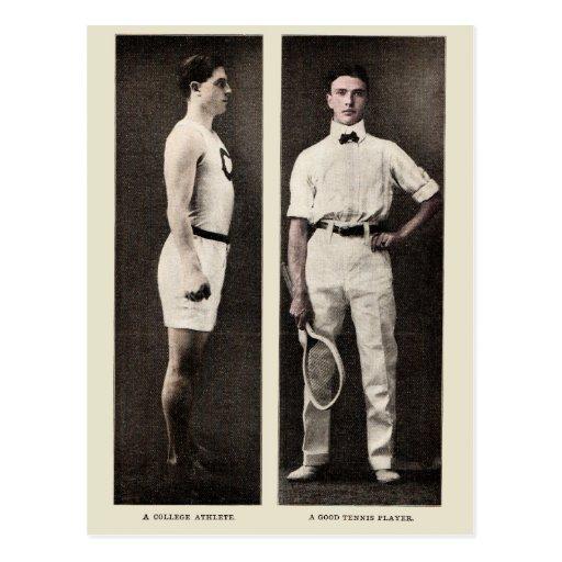 Atleta de la universidad del jugador de tenis del  postales