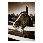 Atomic Cerebellum : Laughing Horse Posters