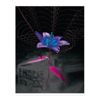 Atomic Flower Postcard