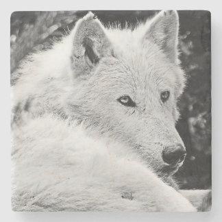 Atontamiento White Wolf Posavasos De Piedra