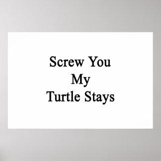 Atorníllele mis estancias de la tortuga impresiones