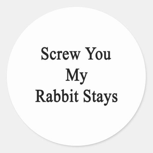 Atorníllele mis estancias del conejo pegatinas redondas