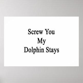 Atorníllele mis estancias del delfín posters