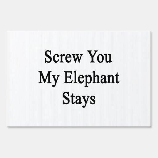 Atorníllele mis estancias del elefante