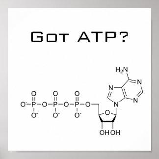 ¿ATP conseguido? Poster