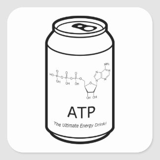 ATP Energy Drink Square Sticker