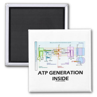ATP Generation Inside (Electron Transport Chain) 2 Inch Square Magnet