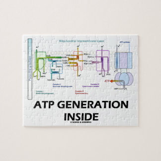 ATP Generation Inside Electron Transport Chain Jigsaw Puzzle