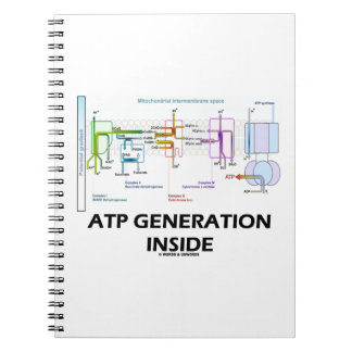 ATP Generation Inside Electron Transport Chain Notebook