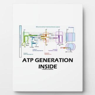 ATP Generation Inside Electron Transport Chain Plaque