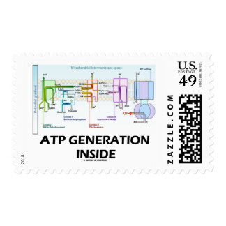ATP Generation Inside Electron Transport Chain Postage