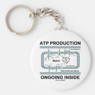 ATP Production Ongoing Inside Keychain