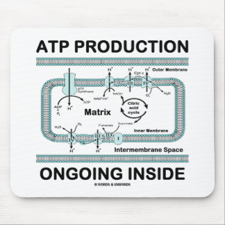 ATP Production Ongoing Inside Mouse Pad