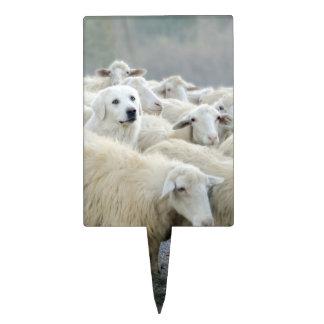 ¡Atrevimiento a ser diferente! Perro pastor que di Figura Para Tarta