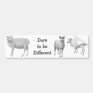 Atrevimiento de las ovejas a ser diversa pegatina  etiqueta de parachoque