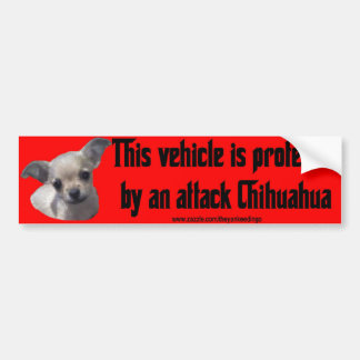 Attack Chihuahua Bumper Sticker